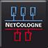 NetCologne - Logo